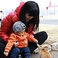 09_餵兔兔.jpg