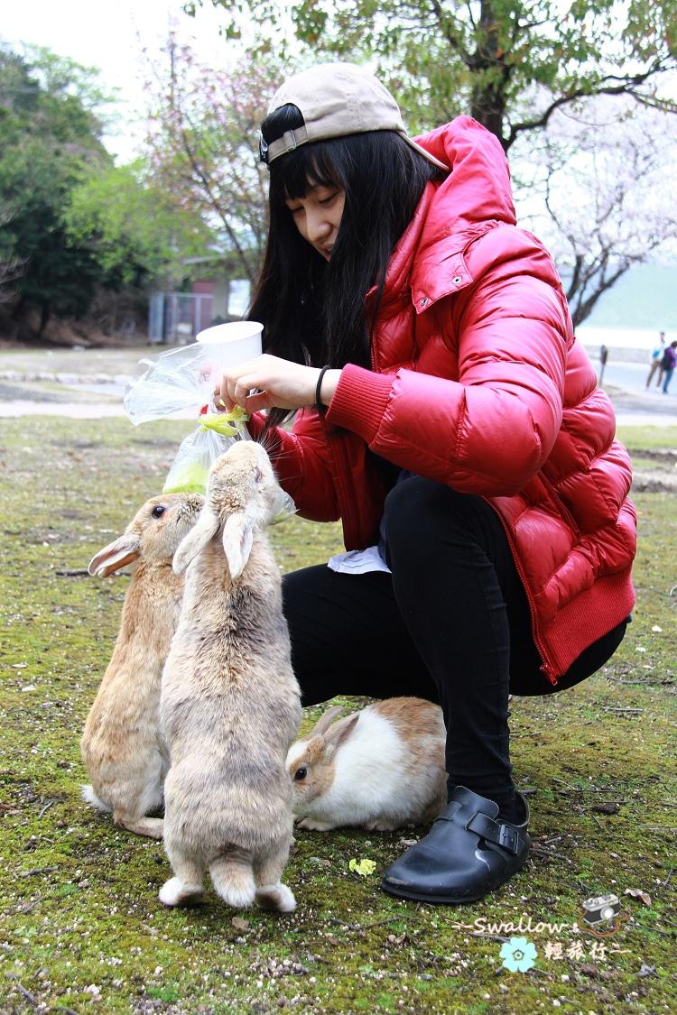 32_餵兔兔.jpg