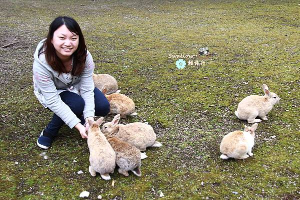 33_餵兔兔.jpg