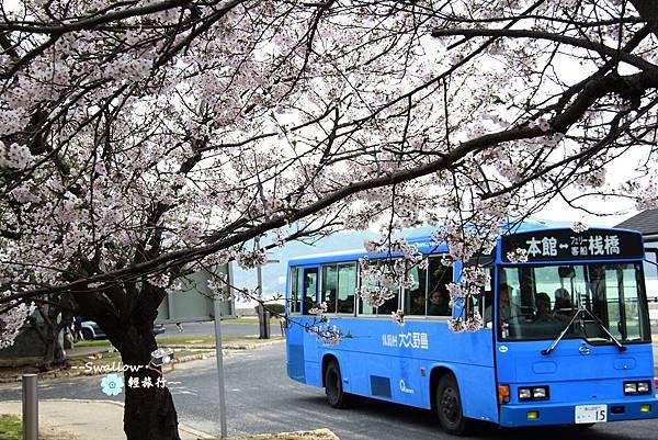 37_櫻花與車.jpg