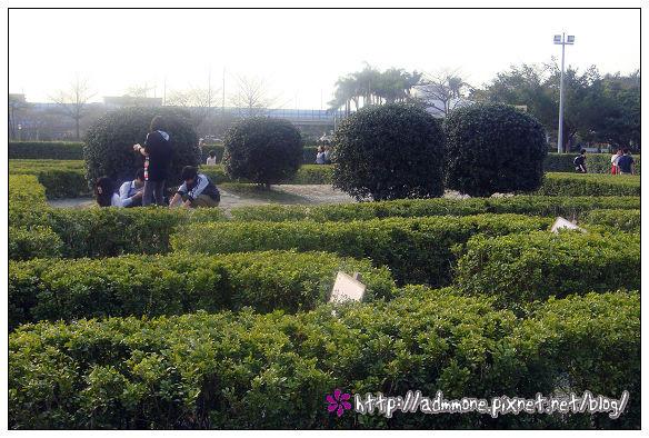迷宮花園-1.jpg