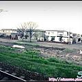 11_JR札幌到小樽_05.jpg