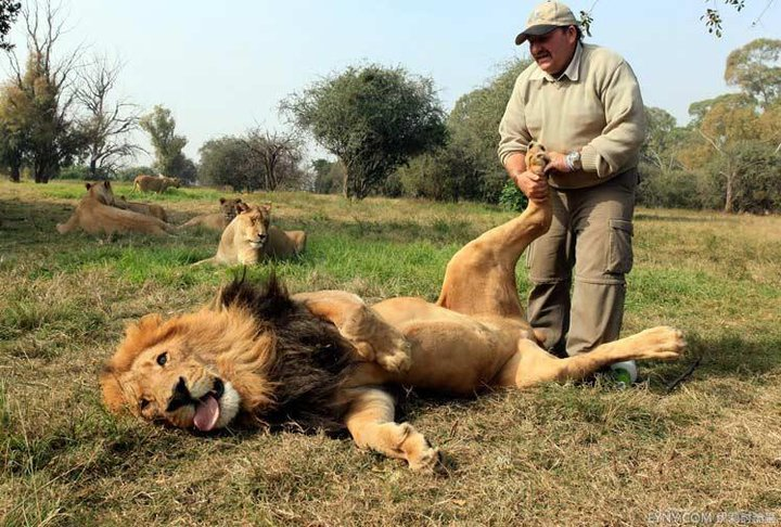 獅王~你腎不好喔.jpg