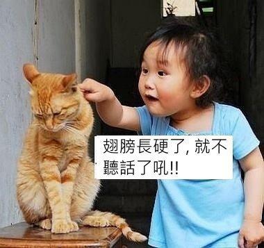 大人要注意管教小孩的方法.jpg