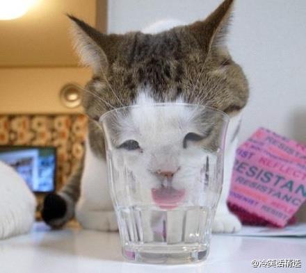 喝水就喝水不要流鼻涕.jpg