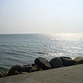 沙~沙~的海潮聲 想起回憶中的花蓮