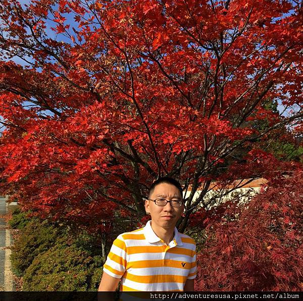 blog IMG_4094.jpg