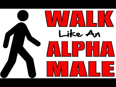 alpha male 4.jpg
