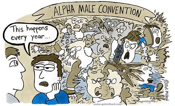 Alpha male 5.jpg
