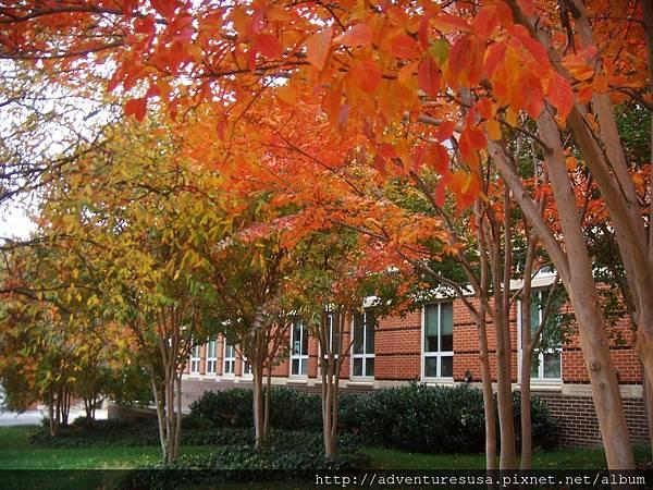 autumn 09 117.jpg