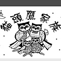 貓頭鷹~1.JPG