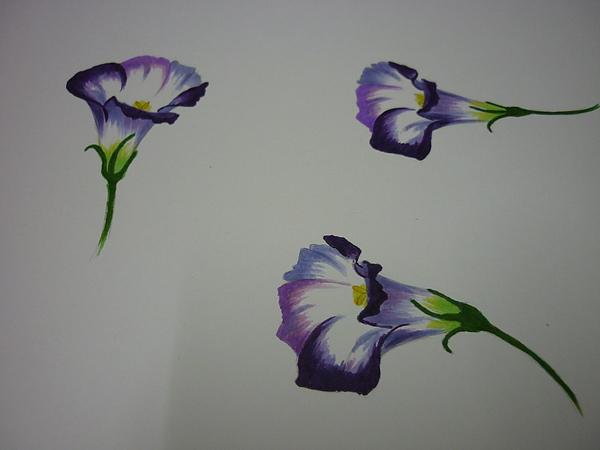 紫3.JPG