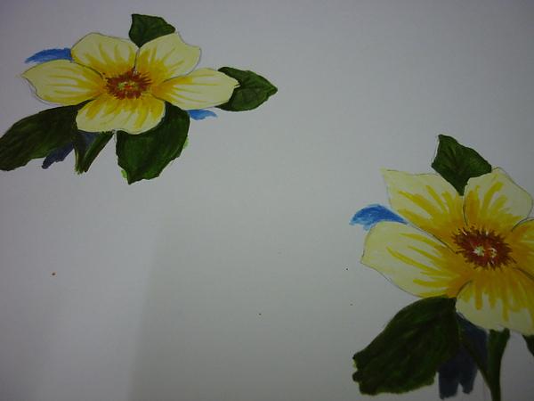 黃花.JPG