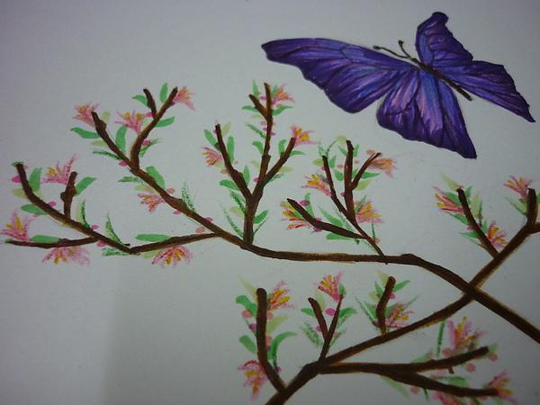 蝶+樹花.JPG
