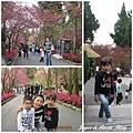 10202九族文化村-16.jpg