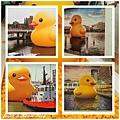 黃色小鴨-4.jpg