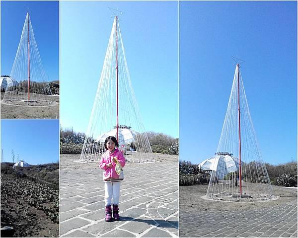 N訪仙人掌公園2.jpg