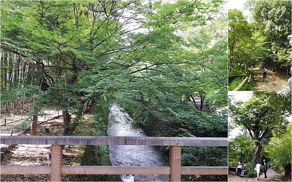 D5二条城+京都御苑+天滿宮14.jpg