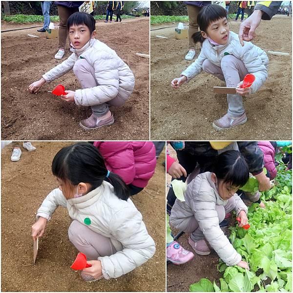 農作體驗5.jpg