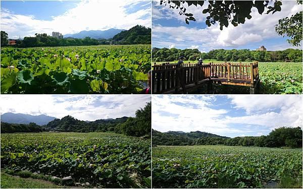 東勢林業.jpg