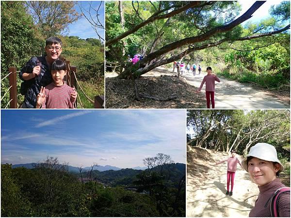 初一大坑步道0125.jpg