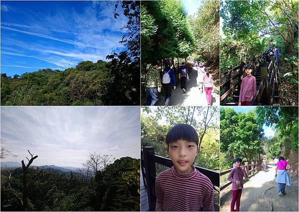 初一大坑步道01251.jpg