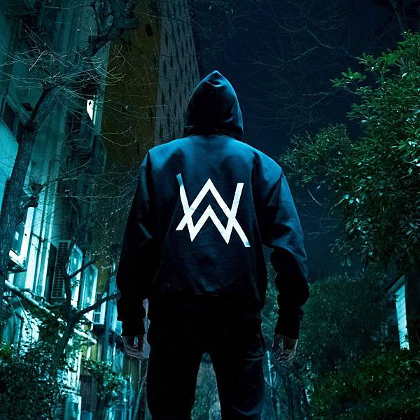 alan walker ft K-391 ignite.jpg