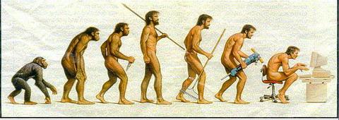 猿人進化.jpg