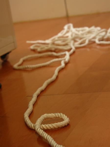 還剩一大堆繩子可以玩