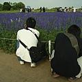 要拍出漂亮照片就要跟著花兒一起蹲