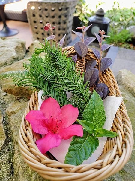植物敲拓染_191110_0007