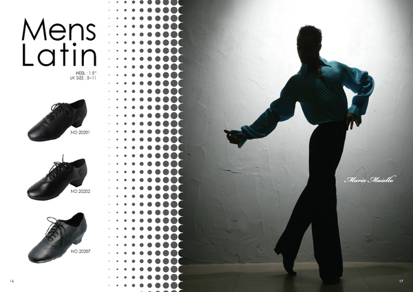 Afa_Brochure2010_09.jpg