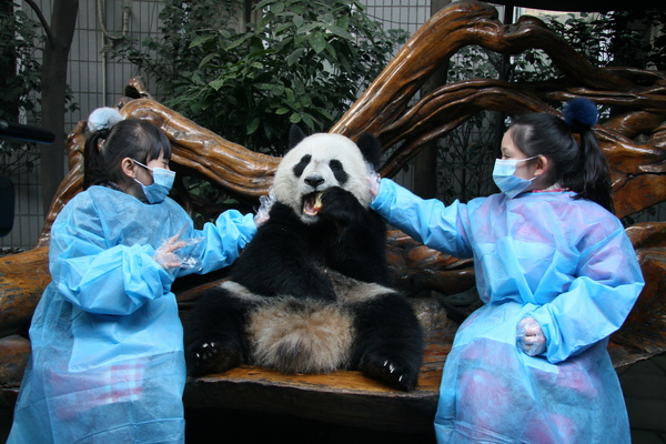 能夠親手觸碰熊貓,愛子(左)跟兆絃覺得畢生難忘1_調整大小.JPG