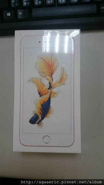 IPHONE6SPLUS-1.JPG