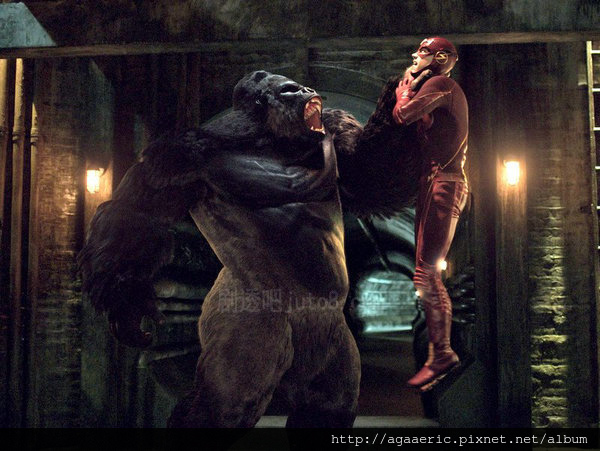 THE FLASH-13.jpg