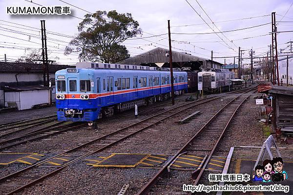 DSC_6264.JPG