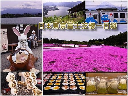page 富士芝櫻一日遊.jpg