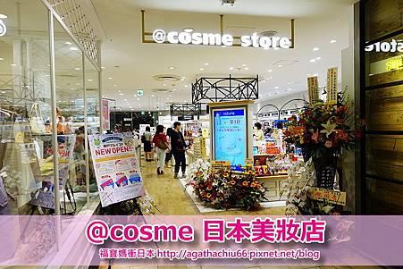 DSC05121 - Copy.JPG