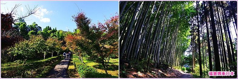 page 神社.jpg