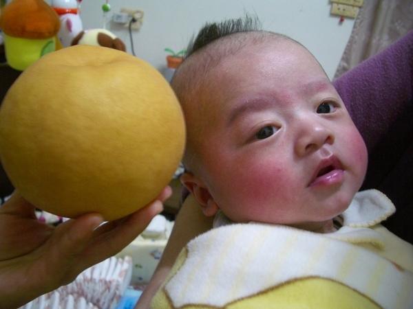好大的水梨
