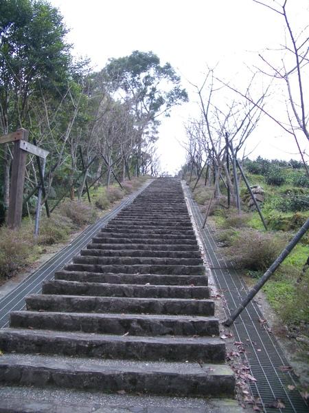 這樓梯....看了就不想走