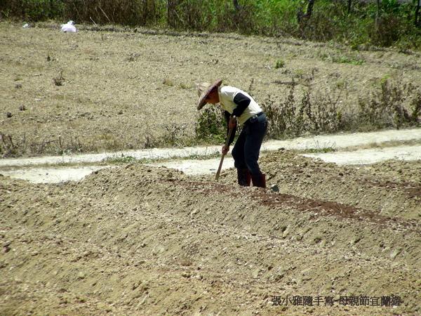 有農人在耕種