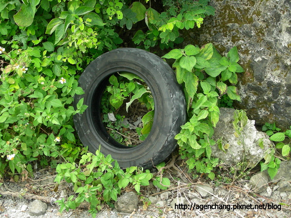 換下的舊輪胎他就直接留在路邊