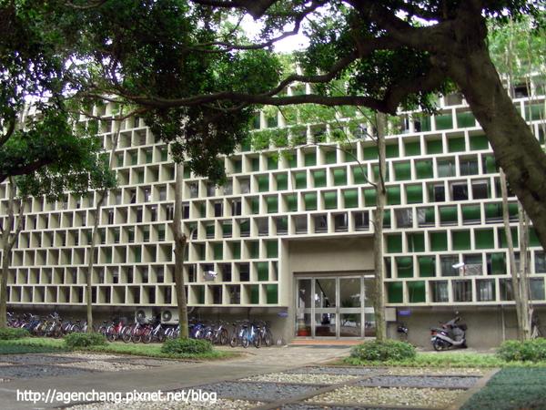 蜂巢狀行政大樓