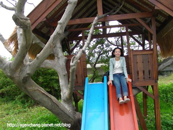架在樹上的樹屋和溜滑梯