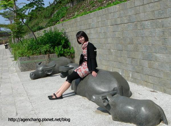 路邊的水牛雕像