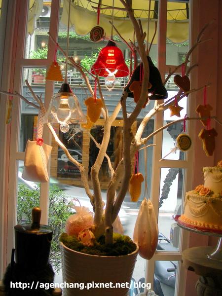 櫥窗的糖果樹
