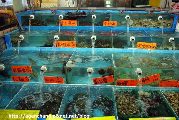"""這些海鮮彷彿在說""""吃我吃我"""""""