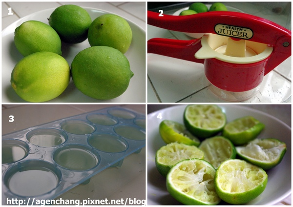 自製檸檬冰塊