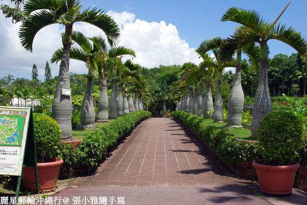 園內滿是熱帶植物